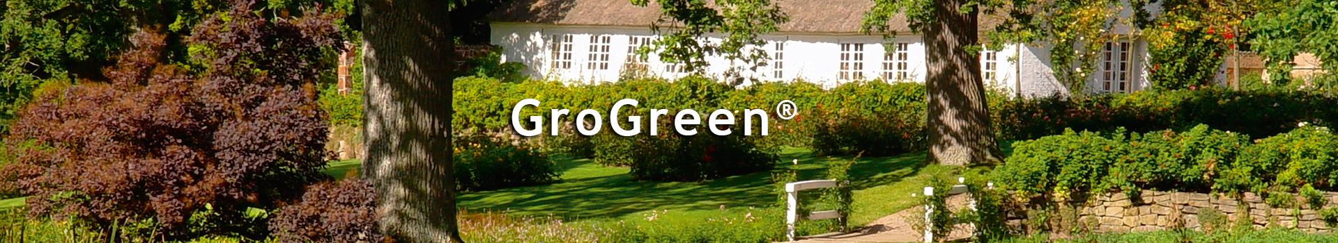 GroGreen<sup>®</sup> Feed & Shine<sup>®</sup> Buxus