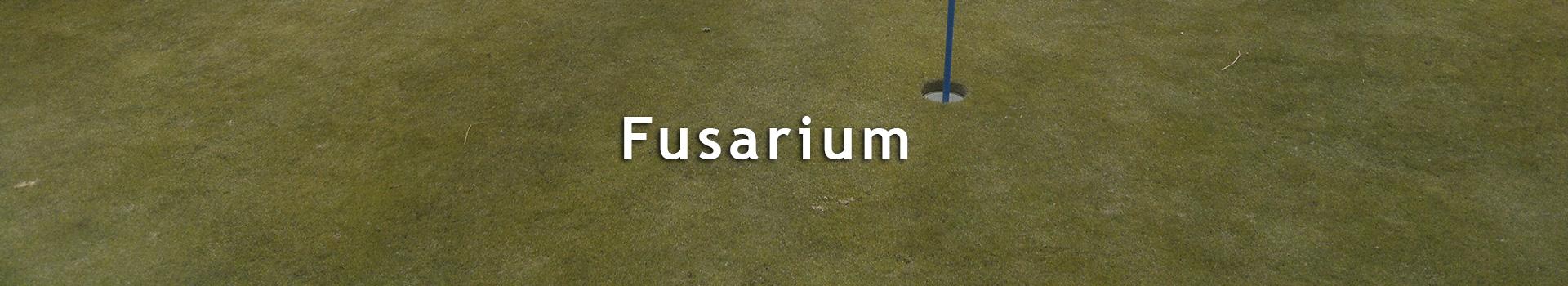 TourTurf<sup>®</sup> FDC Autumn + R-Factor<br>EU: 5-0-0