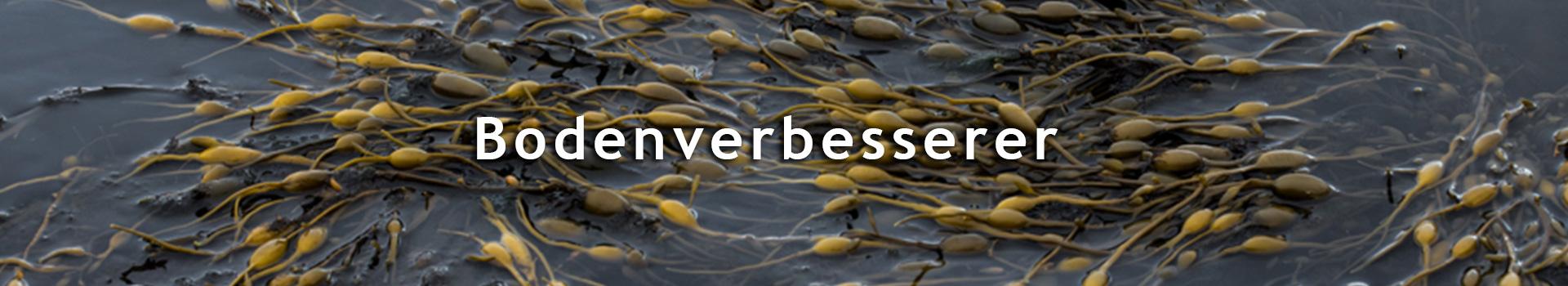 TourTurf<sup>®</sup> Granular Seaweed<br>EU: 2-0-5