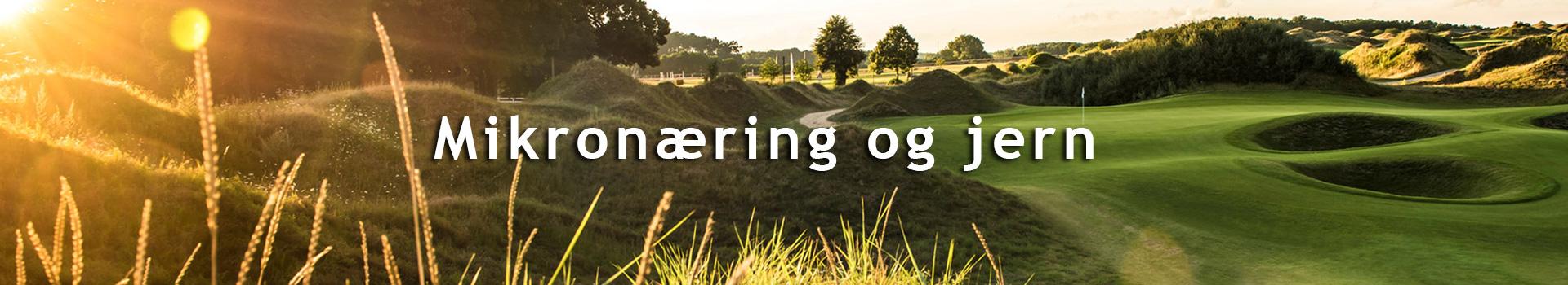 Kategoribillede_mikornaering_og_jern_DK